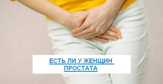 есть ли у женщин простата